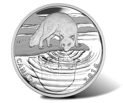 Canadian-2016-Arctic-Fox-Wildlife-Reflections-Silver-Proof-Coin.jpg
